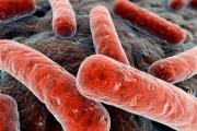 Памятка для родителейпо профилактике туберкулеза у детей и подростков